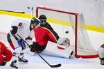 Best Hockey Goals for the Aspiring Pro Player